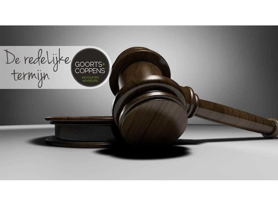 redelijke termijn, ruud verkoijen, bestuursrecht