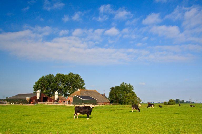 boerderij transitie NVM buitengebied